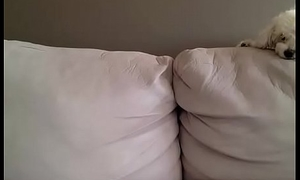webcam 069