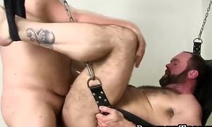 Ursine homosexuals breeding on sex swing in feral foursome
