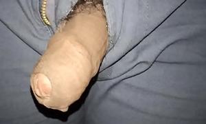 Hot Animal Cock Sucking